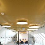 Metal Mesh Ceilings Transform Historic Building