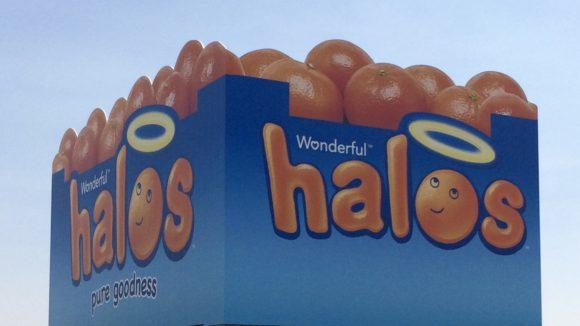 The Halo Warehouse