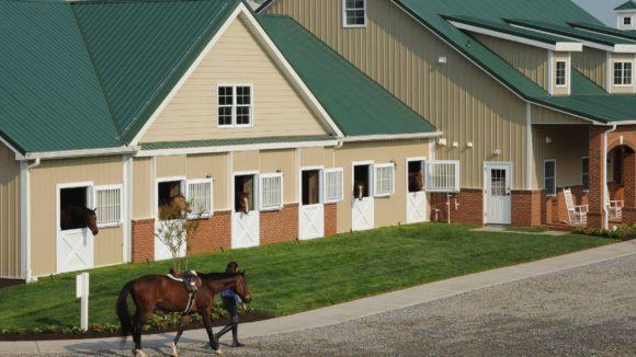 Centerpiece Horse Barn