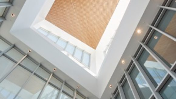 Steel supports curtainwall
